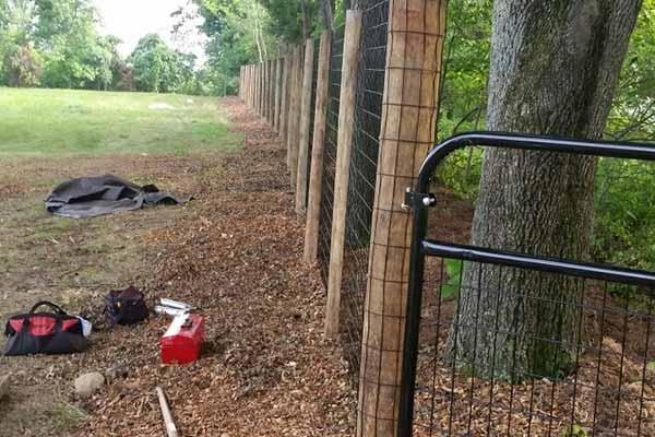 Fencing Image 4