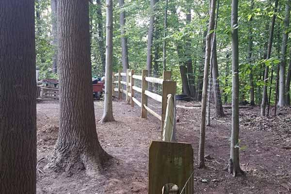 Fencing Image 7
