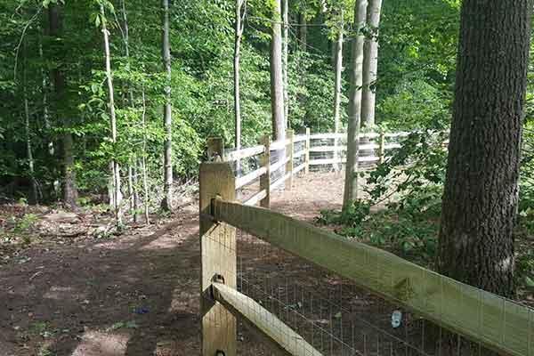 Fencing Image 8