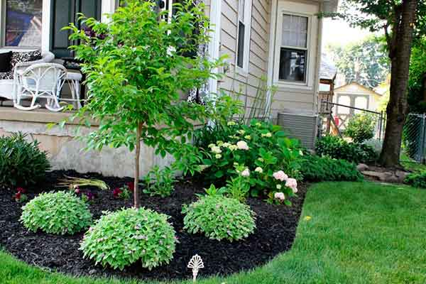 Mulching and Garden Design Image 1