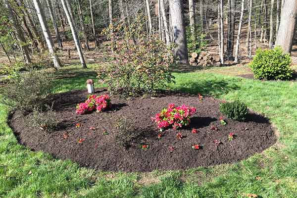 Mulching and Garden Design Image 10