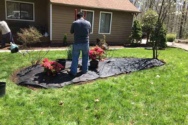Mulching and Garden Design Image 11