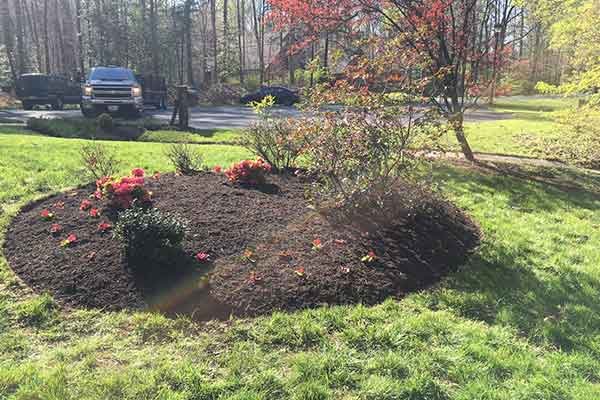 Mulching and Garden Design Image 15