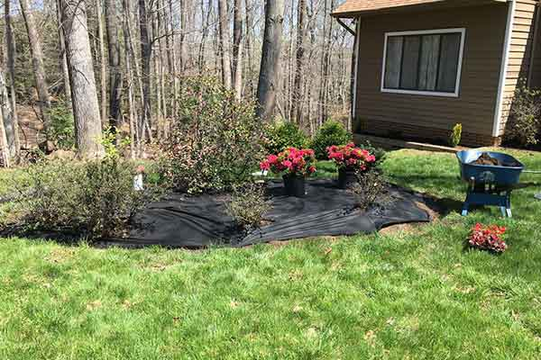 Mulching and Garden Design Image 16