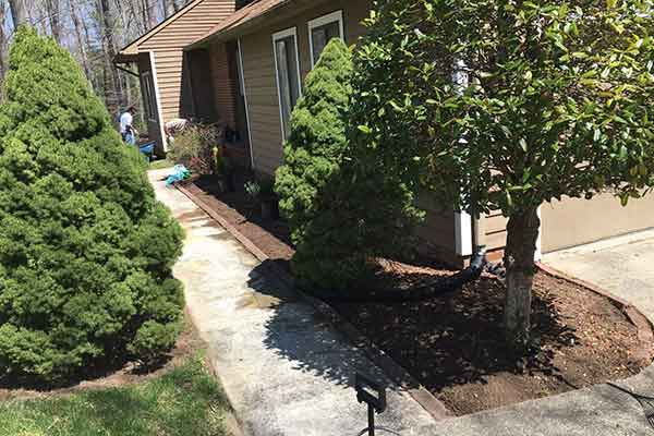 Mulching and Garden Design Image 6
