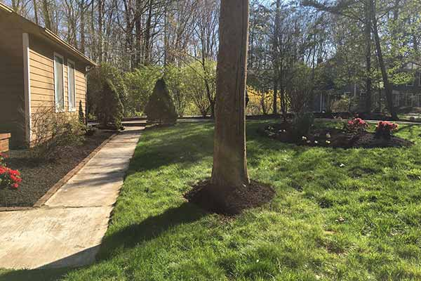 Mulching and Garden Design Image 7