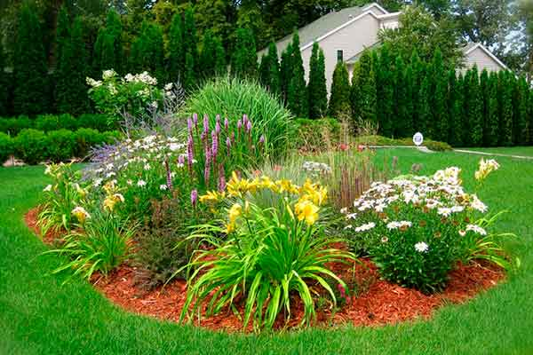 Mulching and Garden Design Image 9